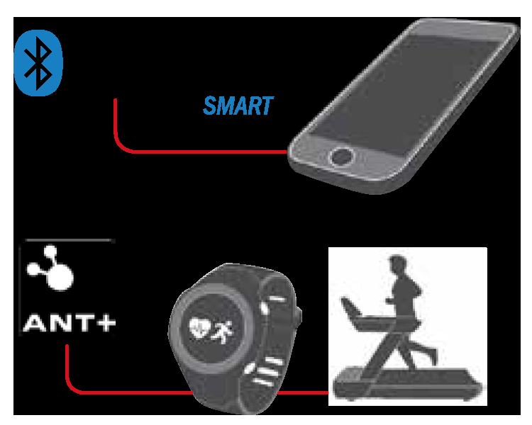 Braasar de fréquence cardiaque Scosche Rhythm Bluetooth et ANT+